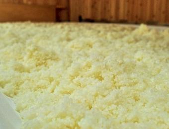 Steamed Rice in Koji Room