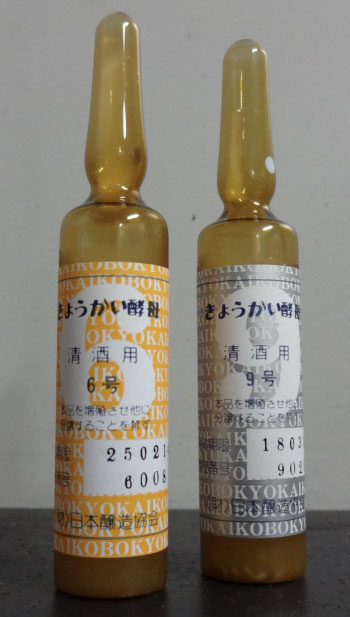 Sake Yeasts in containers - Courtesy of Dewazakura Brewery